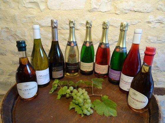 Culture-de-la-vigne.jpg
