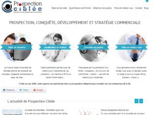 Prospection-Ciblée-Stratégie-Commerciale.png