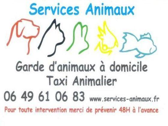 Services-Animaux-Garde-danimaux-à-domicile.jpg