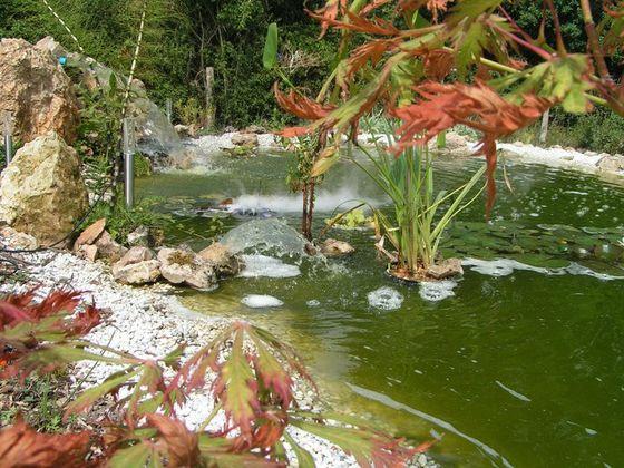 jardinage entretien paysager.jpg