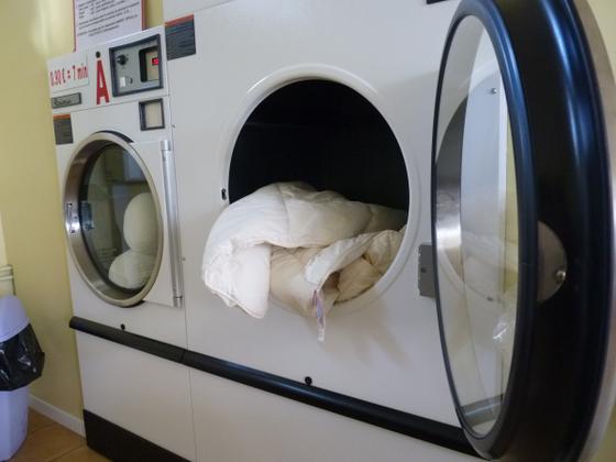 laverie-automatique.png
