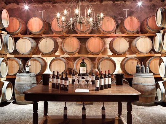 barrique-chêne-œnologie-vin.jpg