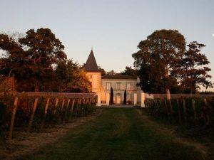 terroir vignoble-16-hectares-de-vigne.jpg