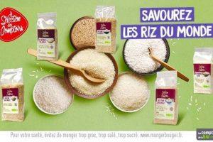 les riz du monde.jpg
