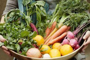 panier fruits legumes fermier.jpg