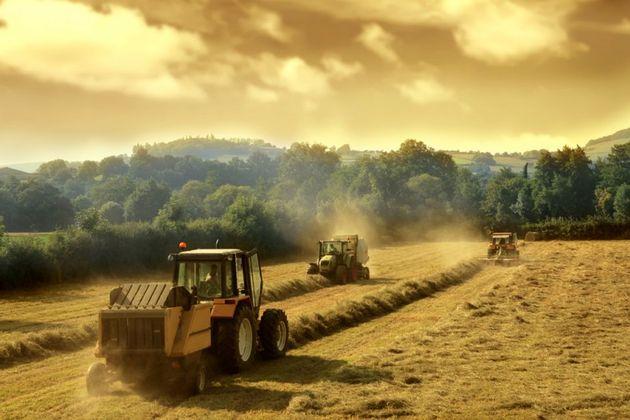 producteur-secteur-alimentaire.jpg